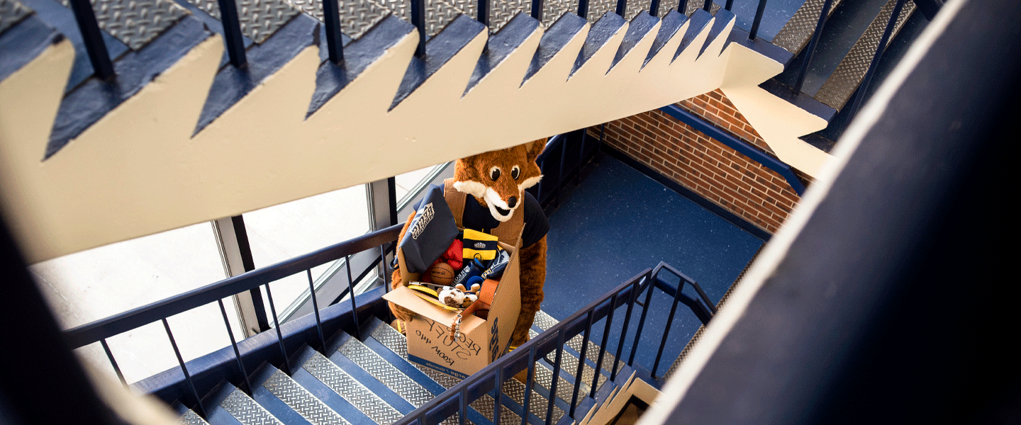 mascot climbs stairs with box